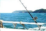 Fishing in Phuket